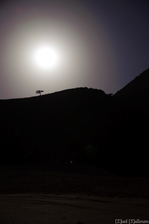 Moon Over Dibba (D700, Tamron 24-135mm f/3.5-5.6 @ 56mm, f5.6, ISO 200, 24 seconds)
